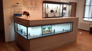 Recepcija-glass-showcases-www.asnova.lv